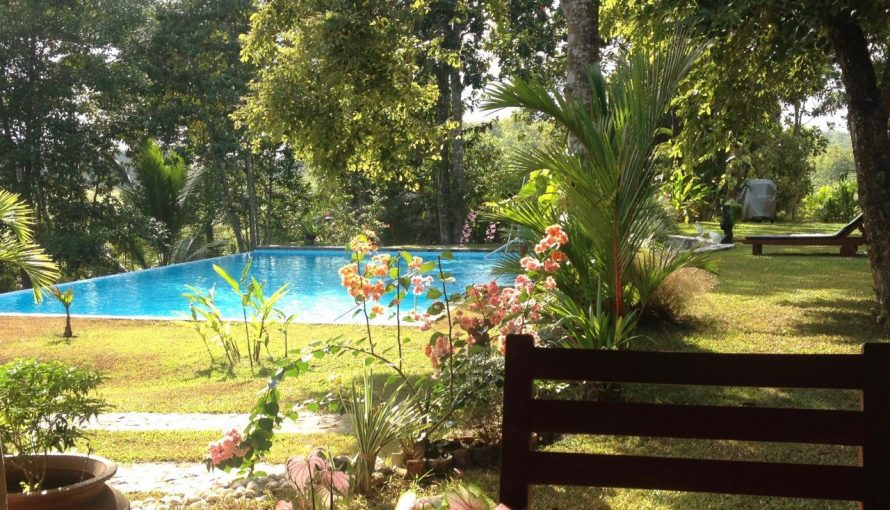 Sri Lanka Pool vom Tisch aus.
