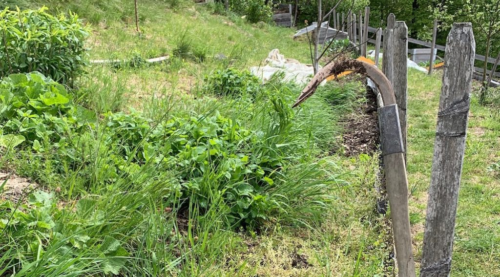 Garten Gartenwerkzeug Gartenzubehoer Sauzahn Kupfer